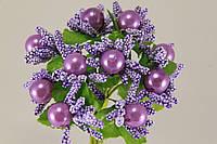 Тычинка фиолетовый  2016-1-10-1