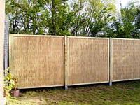 Камыш забор ограда