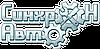 Амортизатор передней подвески правый ВАЗ 2110, 2111, 2112, каталожный номер: 2110-2905002, производство: Дорожная карта ДК 2110-2905002-03