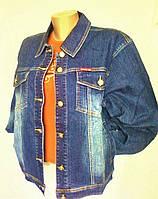 Куртки женские джинсовые (под Mango), р. 52,54,56,58,60,62