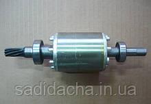 Ротор редуктора редукторной бетономешалки 230л