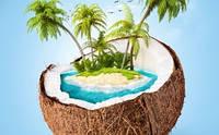 Многогранный и полезный кокос! Следите за новинками в Веган Прод!