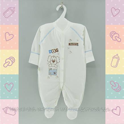 Человечки для новорожденных в роддом,1432беж. Хлопок-Кулир, 0-5 месяцев, В наличии _56_62 Рост, фото 2