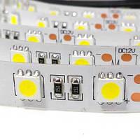 Светодиодная лента BLED 5050-60 W холодный белый, негерметичная, 1м