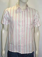Мужская рубашка с коротким рукавом мужская  C&A
