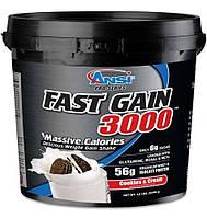 Гейнер Ansi Fast Gain 3000 5.44 kg. Анси