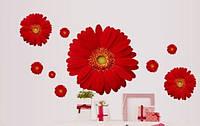 Наклейка виниловая Герберы красные 3D декор