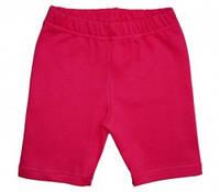 Шорты-трессы  ясельные для девочки, цвет: малиновый