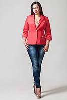 Пиджак женский размер плюс Бостон коралл (50-60)