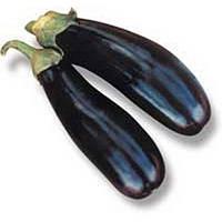 Насіння баклажана Нарвав F1 1000 насінин Lark Seeds