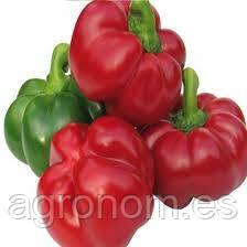Семена сладкого перца Бихар F1 500 семян Lark Seeds