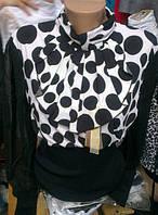 Женская блуза в горошек