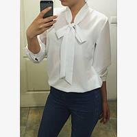 Женская блуза шифоновая с бантом, 2 цвета