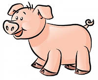 Концентраты (БМВД) для свиней