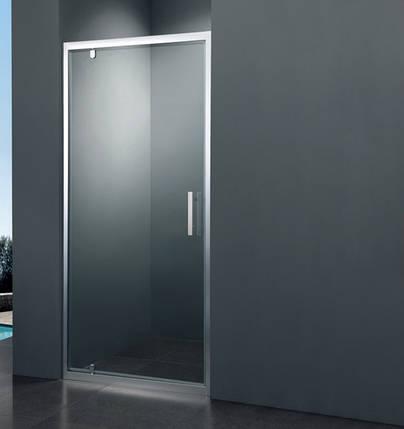 Душевая дверь Primera FRAME SDC1190 90x190, фото 2