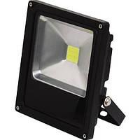 Галогеновый прожектор HL176L 20W  черный  6500K 220-240V / 50-60Hz  1050Lm COB LED