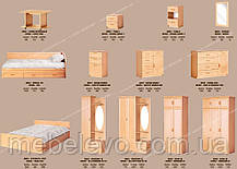 Кровать Вояж 160 яблоня 650х1690х2040мм Світ Меблів, фото 3