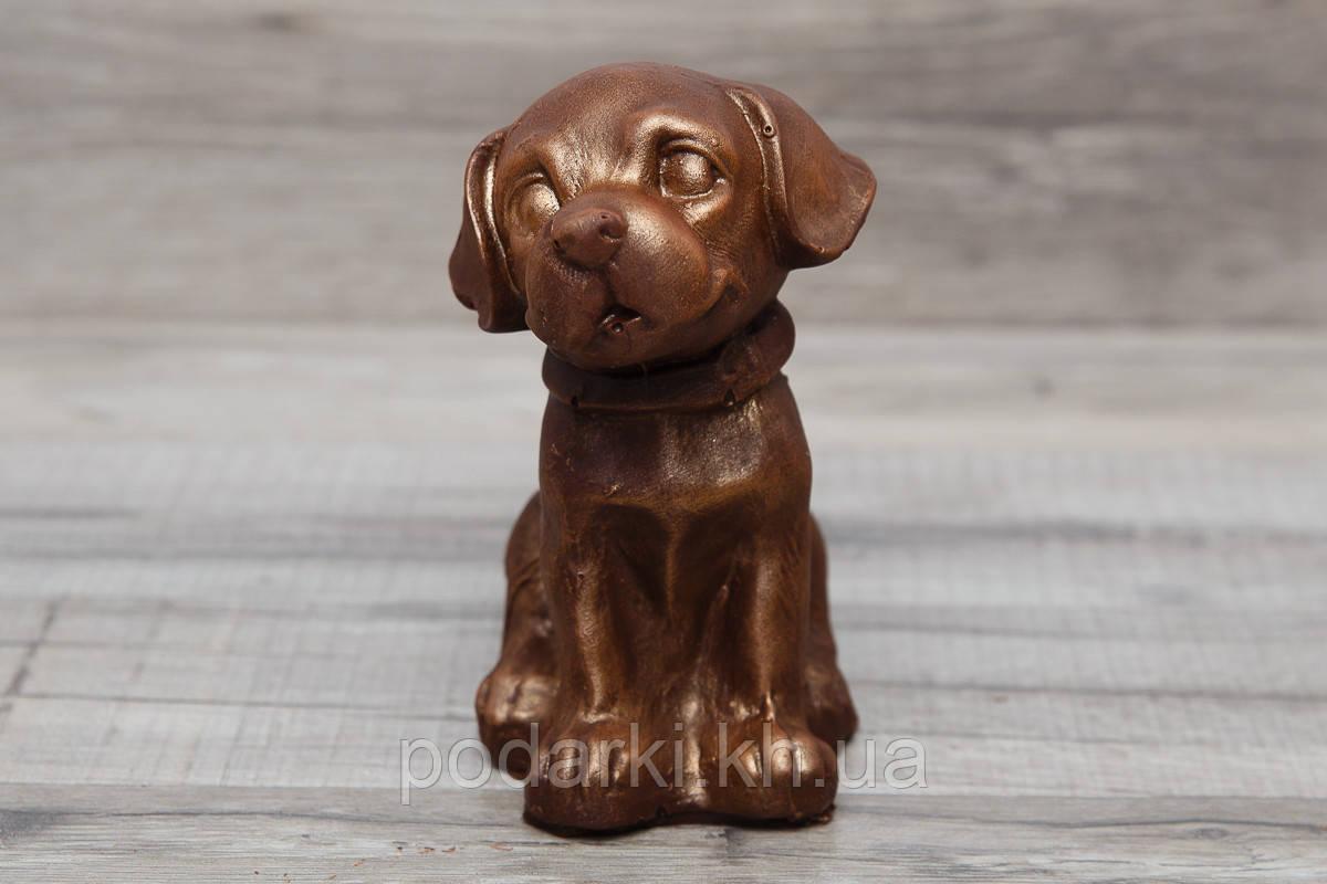 Шоколадная собачка в подарок детям