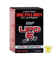 Жиросжигатель Lipo-6 Black Ultra Concentrat от Nutrex 60 капсул