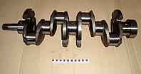 Вал коленчатый Д-240 (ЮБАНА) 240-1005015