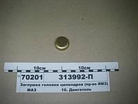 Заглушка головки цилиндров (пр-во ЯМЗ)