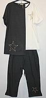 Турецкий костюм Звезды капри + блуза 52-60рр