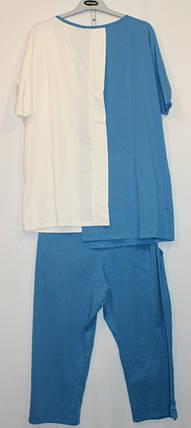 Турецкий костюм Звезды капри + блуза 52-60рр голубой, фото 2