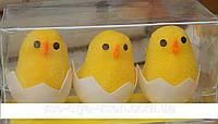 Цыплята в скорлупке, крупные, 3шт в уп.