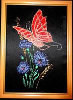 Яркая картина из страз Бабочка на васильках