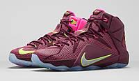Баскетбольные кроссовки Nike Lebron 12 Double Helix