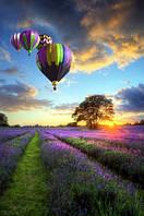 """Фотообои """"Воздушные шары"""", Фактурная текстура (холст, иней, декоративная штукатурка)"""