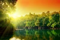 """Фотошпалери """"Захід сонця над лісом"""" - Будь-який розмір! Читаємо опис!"""
