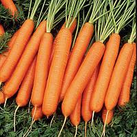 Весовые семена Моркови  Нантская