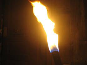 Факелы 40 см (набор из 3 шт.) MFH 26870, фото 3