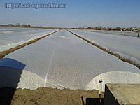 Агроволокно белое шириной 4,2м. толщ. 19/ 100м. плотн. (23;30;)