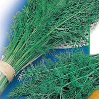 Семена укропа Лесногородский оптом