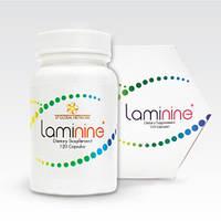 Ламинин (Laminine)