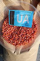 Семена кукурузы Борозенский 277 МВ