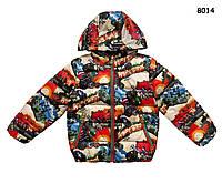 Куртка Angry Birds для мальчика. 100, 110 см, фото 1