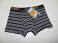 Трусы боксеры для мальчиков Happy Boy, размер 3/4 года. арт. 363