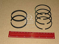 Кольца поршневые компрессора М/К (60,0) (СТАПРИ). СТ-130-3509167-02