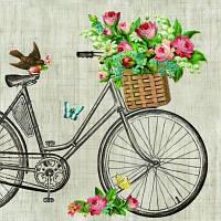 """Салфетки бумажные декоративные """"Робин на велосипеде"""""""
