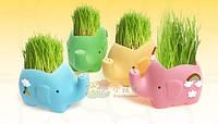 Травянчики Слоники