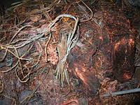 Купим лом меди в Днепропетровске и Днепропетровской области, фото 1