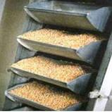 Норія зернова ковшовая стрічкова НКЗ-5 (ковшовий елеватор норія), фото 2