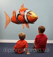 Летающая рыба Air Swimmers рыба-клоун и акула