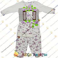 Костюмы для малышей от 0 до 6 месяцев 3 предмета (Боди, ползунки и Шапочка) (4317-2)