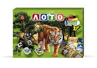 DankoToys Лото в картинках В мире животных