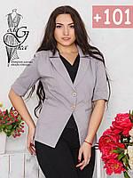 Летний пиджак женский рукавом ¾ из Бенгалина без подкладки-3, фото 1
