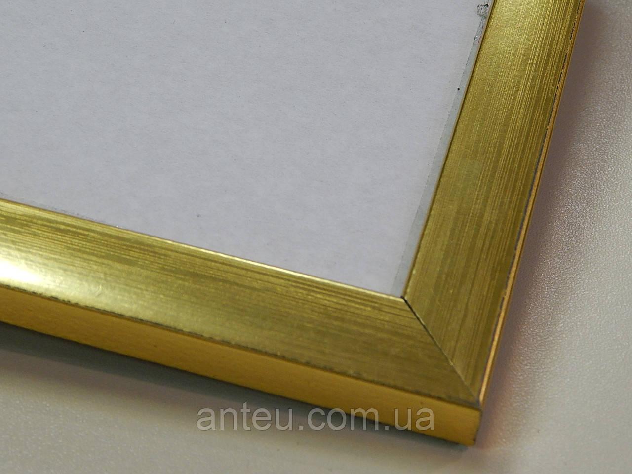 Рамки для дипломов ,грамот,сертификатов. А4 (297х210). 16 мм.Золото.